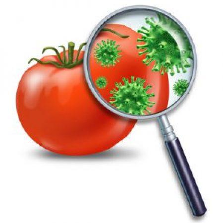 Контаминанты пищевых продуктов