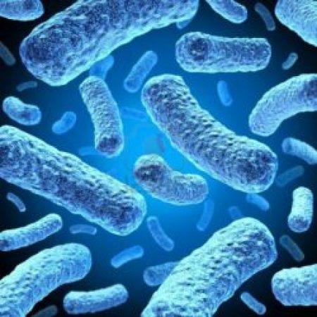 Устойчивость к антибиотикам. Знаем, но не делаем