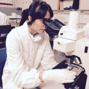 Ученые создали замену синтетическим антибиотикам