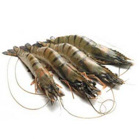Запрещенные антибиотики в азиатской рыбе