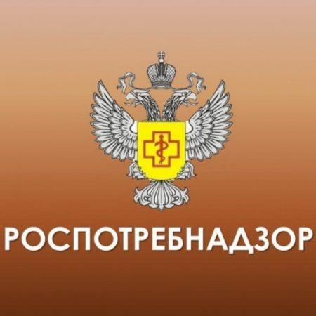 О результатах надзора за качеством продуктов в Красноярском крае