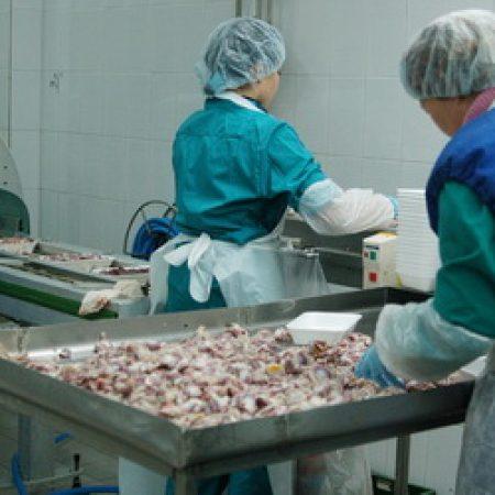Россельхознадзор ограничил экспорт производителям мяса из-за антибиотиков