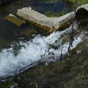 Лекарства в реках повышают риск нарушения экосистем в 20 раз