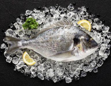 рыба с фермы с антибиотиками