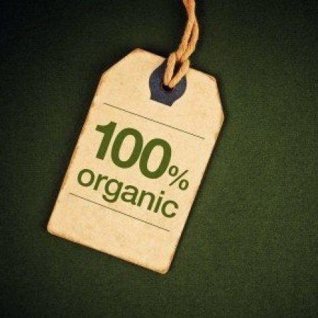 Проект Союза органического земледелия получил грант Президента РФ