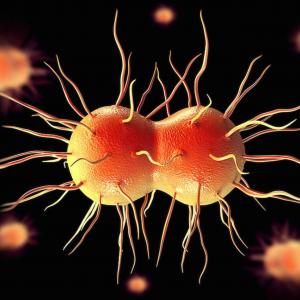 Антибиотик побеждает устойчивые бактерии